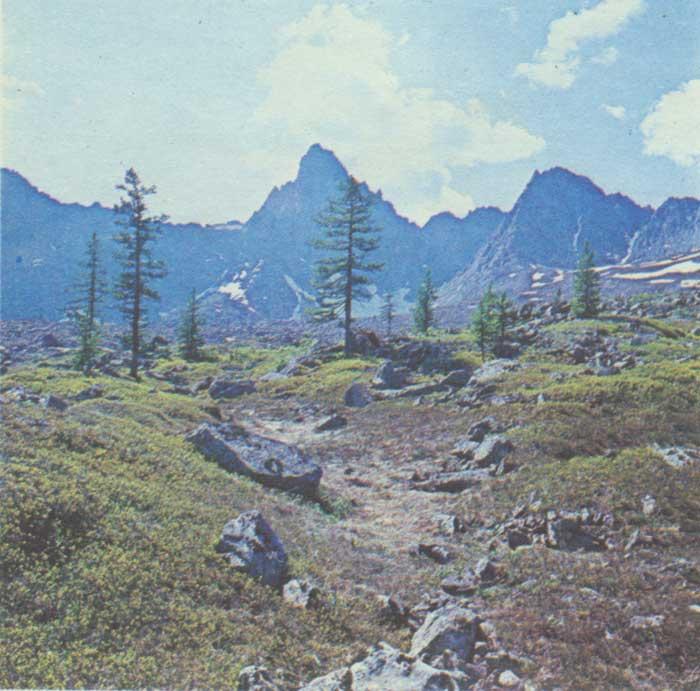 гора сабля фото